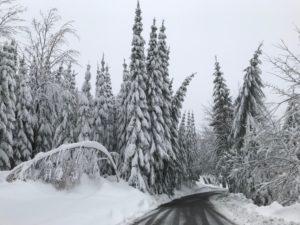 Bahn gesperrt – Termine 12./13.01.2019 abgesagt!