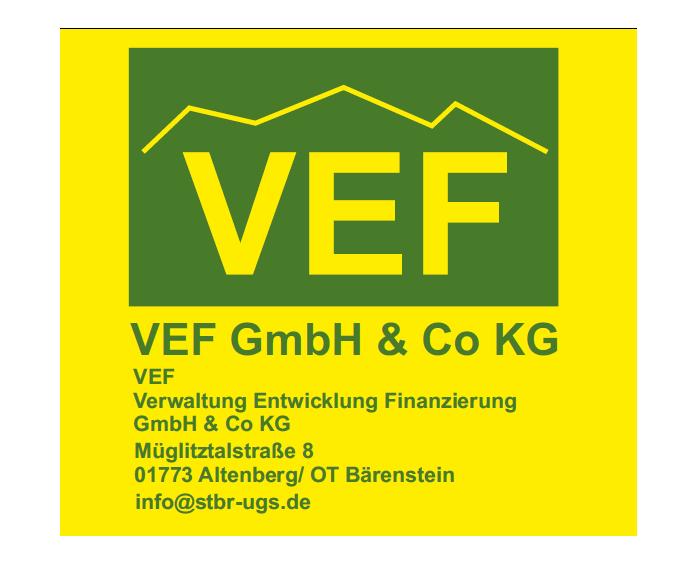 VEF GmbH & Co. KG